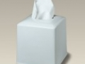 5.5 Porcelain Boutique Tissue Box.jpg